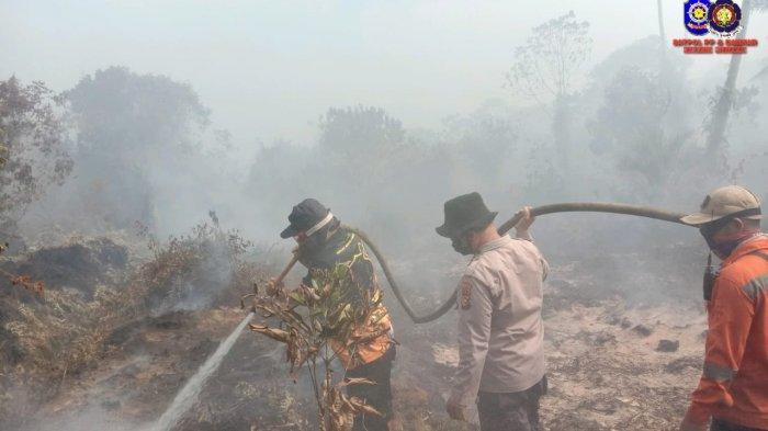 Tidak hanya Kebakaran hutan di Pelalawan, hingga saat ini Luas kebakaran hutan dan lahan (Karhutla) di kabupaten Siak selama 2,5 bulan mencapai 70 Ha.