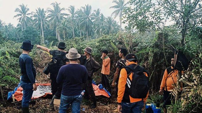 Teledor Tinggalkan Pelepah Berapi,Picu Kebakaran 3 Hektare Lahan,Pria di Inhil Terancam 5 Tahun Bui