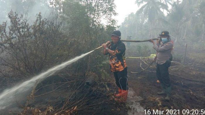 Tim gabungan dari TNI, Polri, Satpol PP dan Damkar, Badan Penanggulangan Bencana Daerah (BPBD), dan rayon kecamatan masih berjuang menjinakkan api yang muncul. Pemadaman api Karhutla berlanjut dan berpindah dari satu titik ke titik lain yang ada di Kuala Kampar.