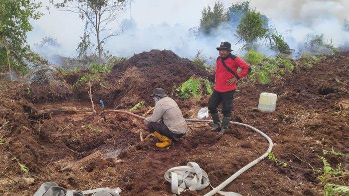 Tim Gabungan Masih Padamkan Karhutla di Pulau Padang