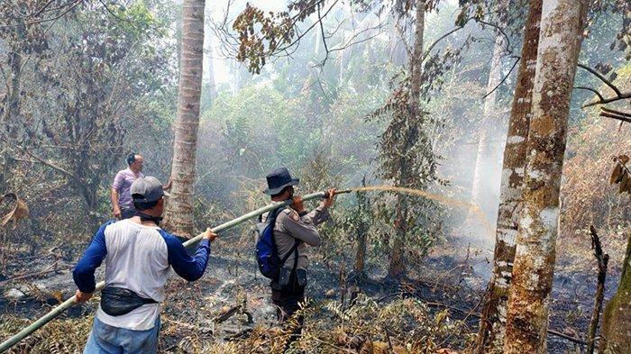 Tim Gabungan Berjibaku Padamkan 129 Titik Api di Riau, Paling Banyak di Kabupaten Ini