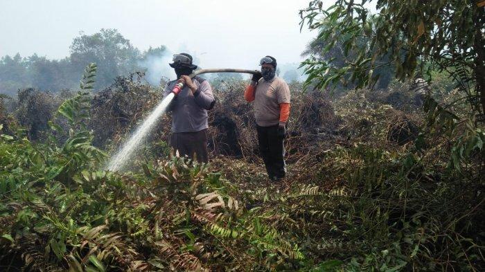 Pemilik dan Luas Lahan Terbakar di Pelalawan Riau Diinventarisasi, Data akan Dibawa ke Mabes Polri