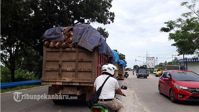 Jalan Rusak di Riau Makin Parah, Penertiban Kendaraan ODOL Dianggap Belum Serius