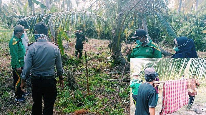 Tulang Belulang Manusia Ditemukan di Kebun Inhil Riau, Diduga Dimakan Biawak