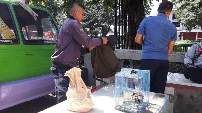 Baru Saja Diambil, Uang Rp 4 Juta Milik Pria Ini Langsung Ludes, Ditukar Burung Rawa