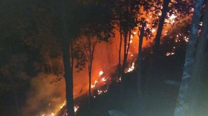 Pengelola Waduk PLTA Angkat Bicara Terkait Terbakarnya Ulu Kasok