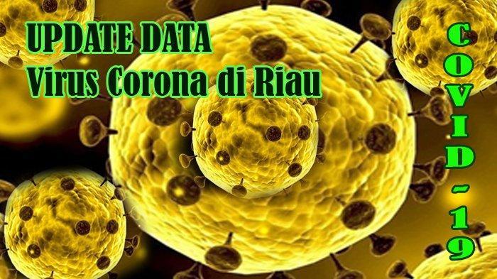 UPDATE DATA Kasus Virus Corona di Riau, Siak, Inhil dan Bengkalis, Tercatat 13 Positif Covid-19