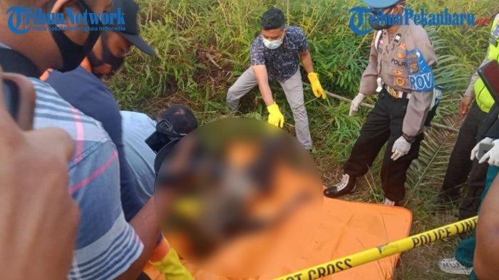 UPDATE Warga Temukan Mayat Wanita Tanpa Kepala dan Kaki di Riau, Ini Penjelasan Polisi