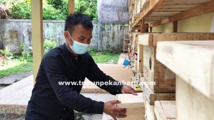 FOTO: Ternak Lebah di Pekanbaru - usaha-ternak-lebah-klanceng-di-jalan-muhajirin-pekanbaru-2.jpg