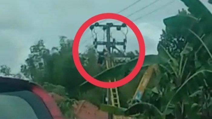 video yang beredar di sejumlah grup WhatsApp teknisi tersengat saat perbaiki jaringan listrik Laporan Wartawan TribunMadura.com, Kuswanto Ferdian