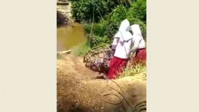 Viral Video Tiga Anak SD Bergelantungan Menyeberang Sungai Lokasi di Kampar Kiri, Ini Faktanya