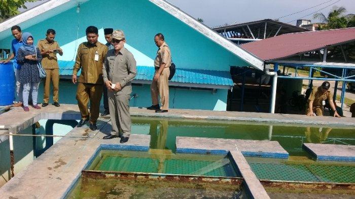 Wako Dumai Tinjau Kondisi Terkini Pengolahan Air Bersih di PDAM