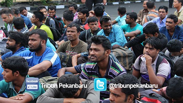 47 Imigran Gelap Asal Bangladesh Diamankan di Dumai