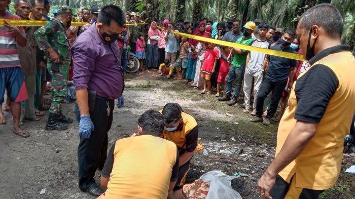 Warga Desa Sungai Putih Kampar Geger Penemuan Mayat Perempuan Membusuk di Tengah Kebun Sawit