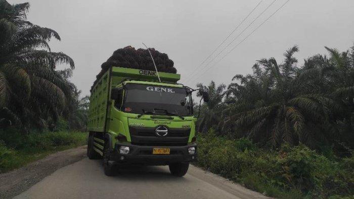 Warga Tapung mengeluhkan jalan rusak yang menganga akibat ODOL, Dishub Kampar pun bereaksi.