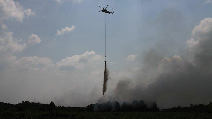 Karhutla di Riau Ratusan Hektare,Sudah Operasikan 2 Helikopter Water Bombing,Segini Kapasitasnya