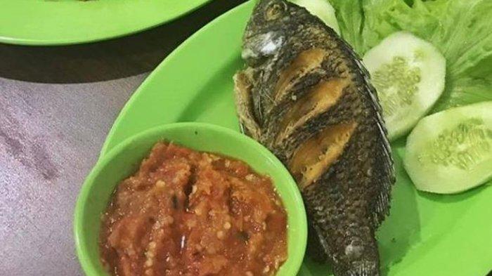 Wisata Kuliner di Pekanbaru, Nikmati Pecel Lele Enak di Pecel Lele Nusantara dengan Sambal Segar. Foto: Pecel lele enak di pekanbaru - pecel lele di riau - pecel lele di pekanbaru - pecel lele favorit di pekanbaru