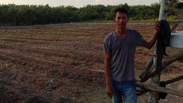 Sarjana asal Desa Pangkalan Pisang Tebang Sawit, Lalu Tanam Cabe & Semangka, Hasilnya Luar Biasa