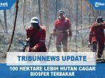 100-hektare-lebih-hutan-cagar-biosfer-terbakar.jpg