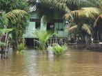 banjir_di_pelalawan_giliran_langgam_terkepung_air_saat_2-desa_di_pangkalan_kerinci_masih_tergenang1.jpg