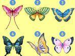bentuk-kupu-kupu.jpg