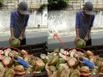 boneka-dan-penjual-air-kelapa_20171126_135032.jpg