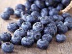 buah-blueberry_20170807_190050.jpg