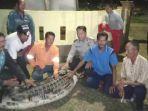 buaya_pemangsa_bocah_di_bonai_rohul_ditangkap_orang_tua_korban_merasa_lega.jpg