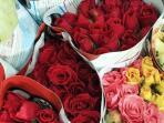 bunga-mawar-pasar-rawa-belong.jpg
