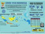 data-penyebaran-virus-corona-covid-19-di-indonesia.jpg