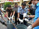 dicek_dulu_asli_atau_tidak_polresta_pekanbaru_musnahkan_barang_bukti_sabu_45_kg.jpg