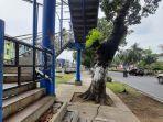 ditutup_sementara_dua_jpo_di_pekanbaru_dipasangi_pagar_besi_ini_posisinyajpg.jpg