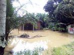 dua_kecamatan_di_rohul_riau_dilanda_banjir_ratusan_rumah_terendam_hingga_1_meter.jpg