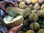 durian-sepanjang-tahun-di-pekanbaru_20181026_100942.jpg