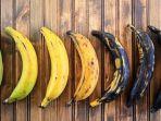empat-jenis-pisang.jpg