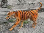 foto-anjing-yang-dicat-mirip-harimau.jpg