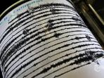 foto-seismograf-gunung-sinabung-getaran-gempa_20150512_081312.jpg