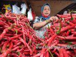foto_harga_cabe_merah_di_pekanbaru_melonjak_jelang_akhir_tahun_3.jpg