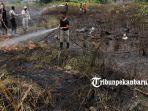 foto_kebakaran_lahan_di_jalan_bundo_kandung_pekanbaru_1.jpg<pf>foto_kebakaran_lahan_di_jalan_bundo_kandung_pekanbaru_2.jpg<pf>foto_kebakaran_lahan_di_jalan_bundo_kandung_pekanbaru_3.jpg