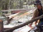 ilegal-logging-kerumutan.jpg