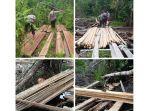 illegal_logging_pelalawan_20170201_114648.jpg