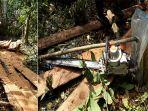 illegal_logging_pembalakan_liar-perambahan-hutan-kerumutan-pelalawan_20170312_151140.jpg