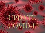 ilustrasi_update_covid-19_virus_corona_1.jpg