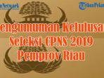 ini-daftar-296-peserta-seleksi-cpns-2019-yang-lulus-seleksi-cpns-2019-pemprov-riau.jpg