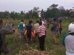 jasat-wanita-dalam-karung-di-ladang-jagung_20161226_172819.jpg