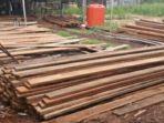 kayu-hasil-perambahan-hutan_20181104_120543.jpg