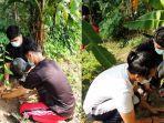 mahasiswa-kukerta-unri-lakukan-pembagian-dan-penanaman-1000-bibit-buah-produktif-di-desa-padang-luas.jpg