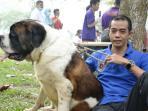 miin-pembina-pekanbaru-dogs-lover-community-pdlc_20160226_085515.jpg