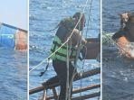 pelaut-thailand-menyelamatkan-empat-anak-kucing.jpg