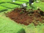 pembongkaran-empat-makam-fiktif-di-tpu-kampung-kandang_kuburan-gali-kubur20160803_20160807_080642.jpg